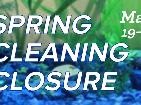 Spring Cleaning Closure