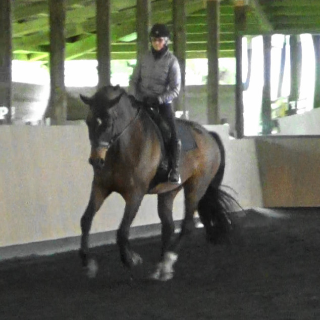 Stephanie training Reed