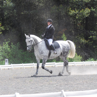 Ann and Aslan at Deary dressage show