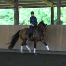 Stephanie training Sirsen