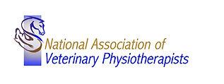 NAVP Logo 2.jpg