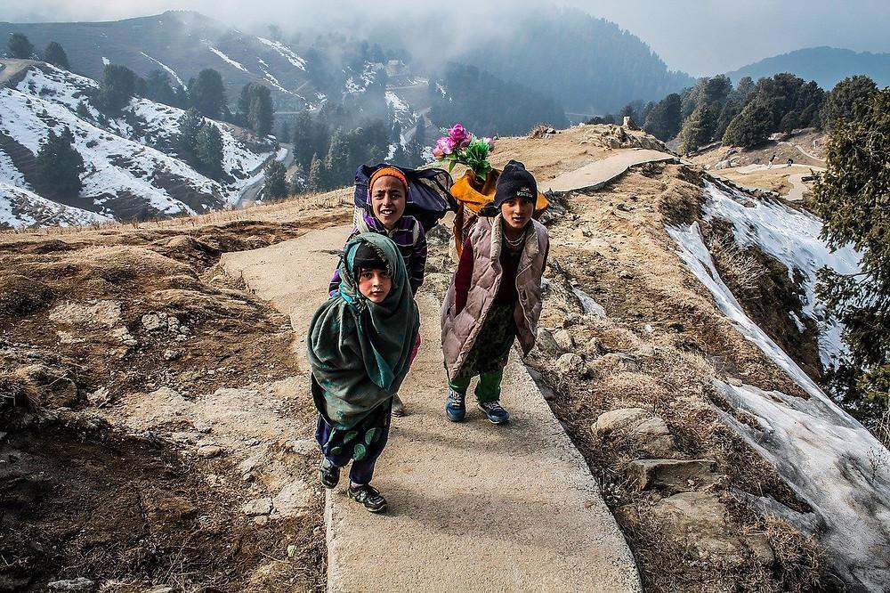 צפון הודו החלק הצפוני הקר והגבוה של הודו. זהו אזור כפרי ברוב אזוריו עם טבע שנפרס כמו גלויה .התקופה המומלצת לביקור בצפון הודו היא בין תחילת אפריל ועד לסוף אוקטובר