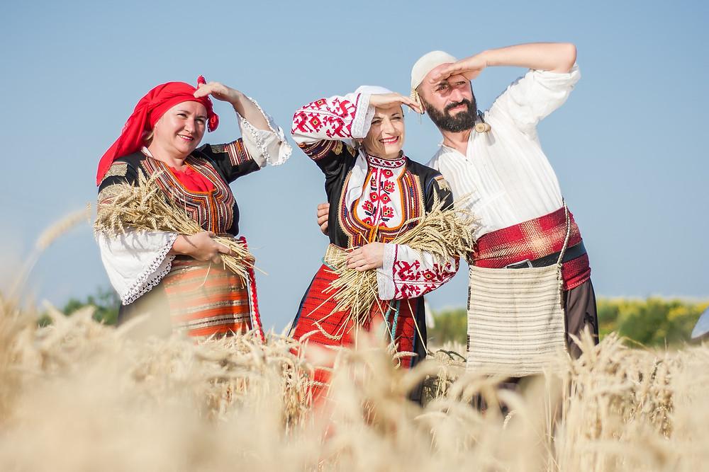 קציר חיטים בבורגס שבבולגריה