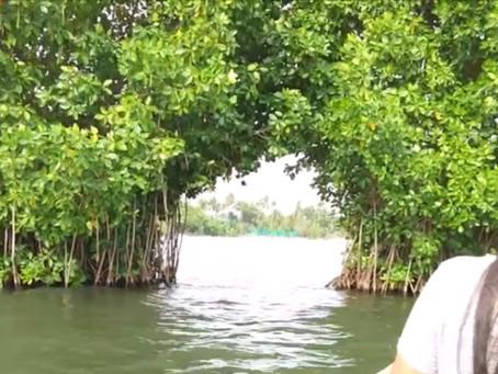 מונרו איילנד  - אי בתולי בשפיץ של דרום הודו