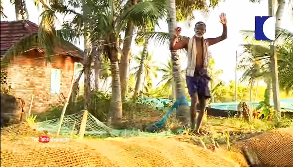 על גדות הבק ווטארס במדינת קרלה בהודו