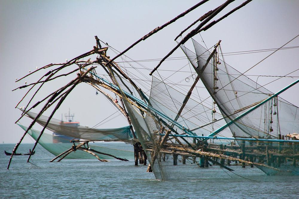 רשתות הדייגים הסינים בקוצ'ין