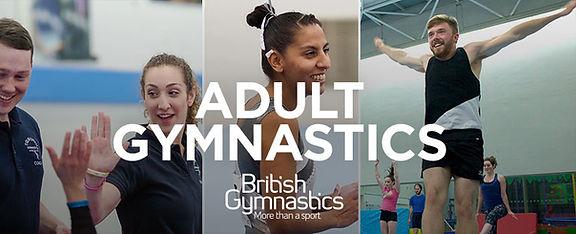 Adult-Gymnastics.jpg