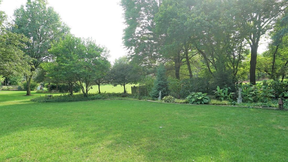 Backyard (view 2)