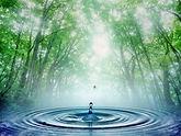 Reiki-Therapy-New-York-NY-300x225.jpg