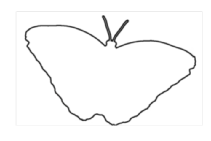 Butterfly-outline-black.png