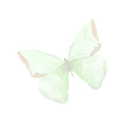 Watercolor%20Butterfly%202_edited.png
