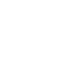white-dragonfly.png