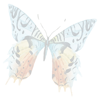 Watercolor%20Butterfly%2013_edited.png