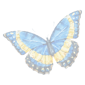 Watercolor%20Butterfly%2010_edited.png
