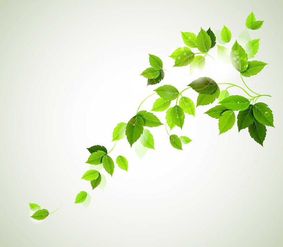 Leafy-bg.jpg