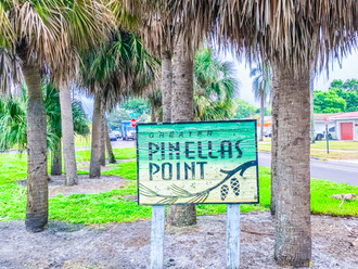 Pinellas Point, Where the Streets are Lined With Pink