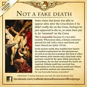 Not a Fake Death.jpg