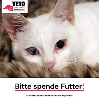 4-Futter_fuer_die_Vergessenen-Bitte_spen