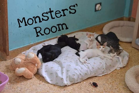 Bild Monsters Room.jpg