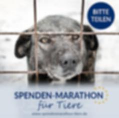 Spenden_Facebook_Post_Spenden-Marathon_2