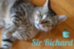 Sir Richard.jpg