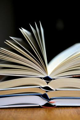 De Stoorzender boekenlijst