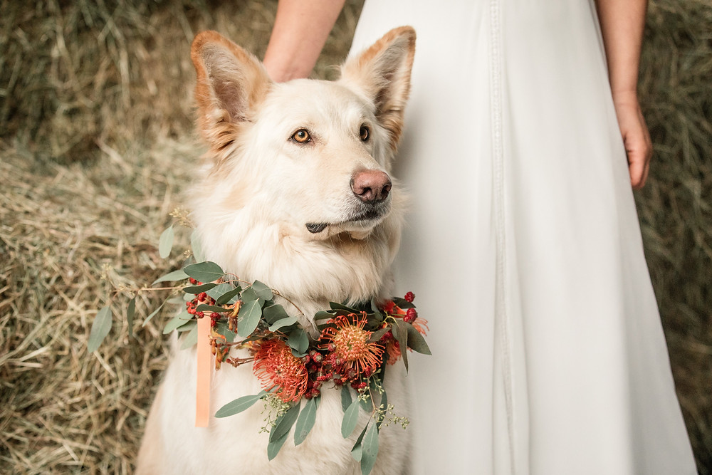 Boudica Styled Shoot, Magpie Weddings