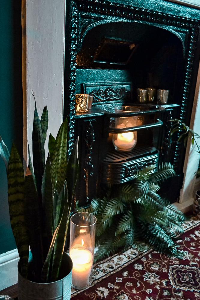 Fireplace, Sanseveria, Opulent