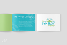 The Synergy Company: A Brand Identity Style Guide