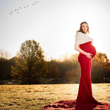 Jennifer Maternity Birds