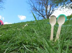 'The Happy Spoons'