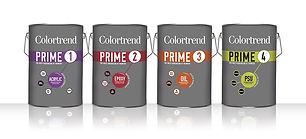 Colourtrend primer sealer.jpg