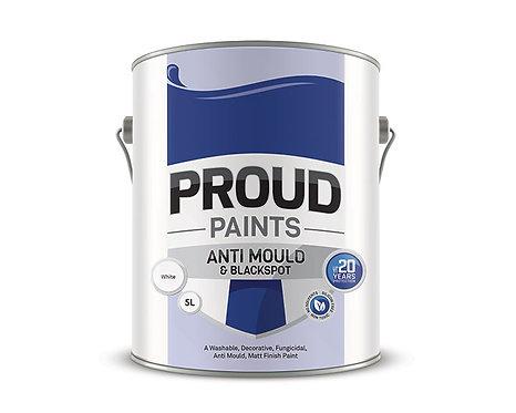 Anti Mould Paint