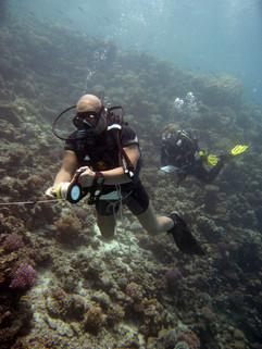 Reef Check in Action 088.JPG