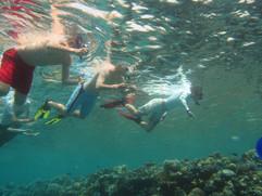 Korallenriff2010_01.JPG