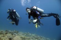 Masbat Bay Conservation EG-150.JPG