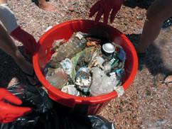 RSEC-Clean-Ups-2010-02.JPG