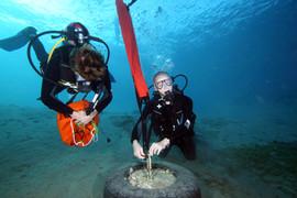 Masbat Bay Conservation EG-113.JPG