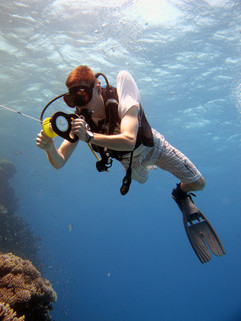 Reef Check in Action 101.JPG