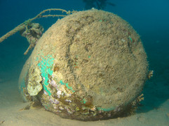 Masbat Bay Conservation EG-124.jpg