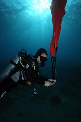 Masbat Bay Conservation EG-083.JPG
