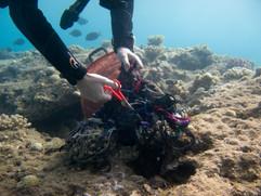 Masbat Bay Conservation EG-177.jpg