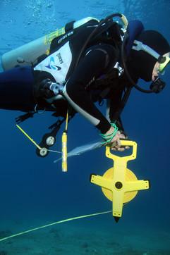 Masbat Bay Conservation EG-139.JPG