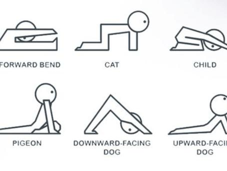 Cara Mudah Melatih Otot Punggung di Rumah Tanpa Alat