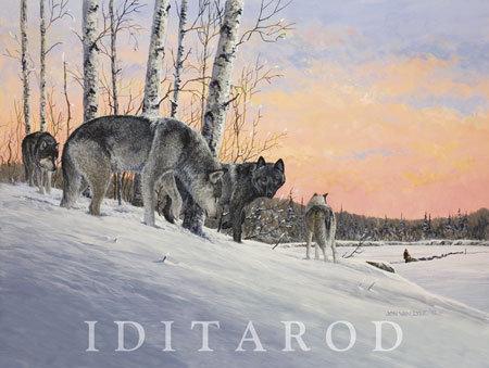 2013 Iditarod Poster
