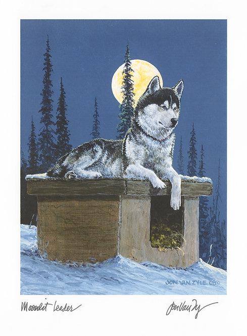Moonlit Leader
