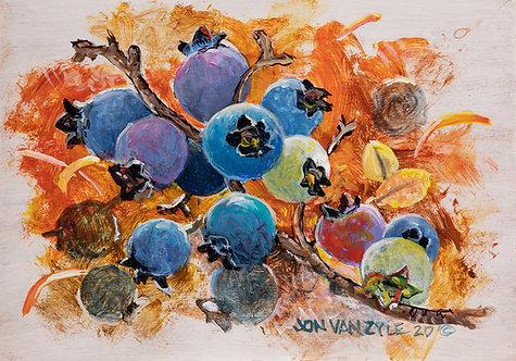 Blueberries - $800 - SOLD