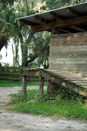 Florida   Stafford Hill