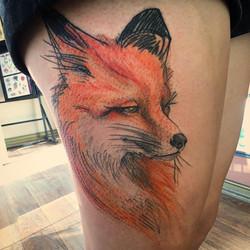 Fox on Casey