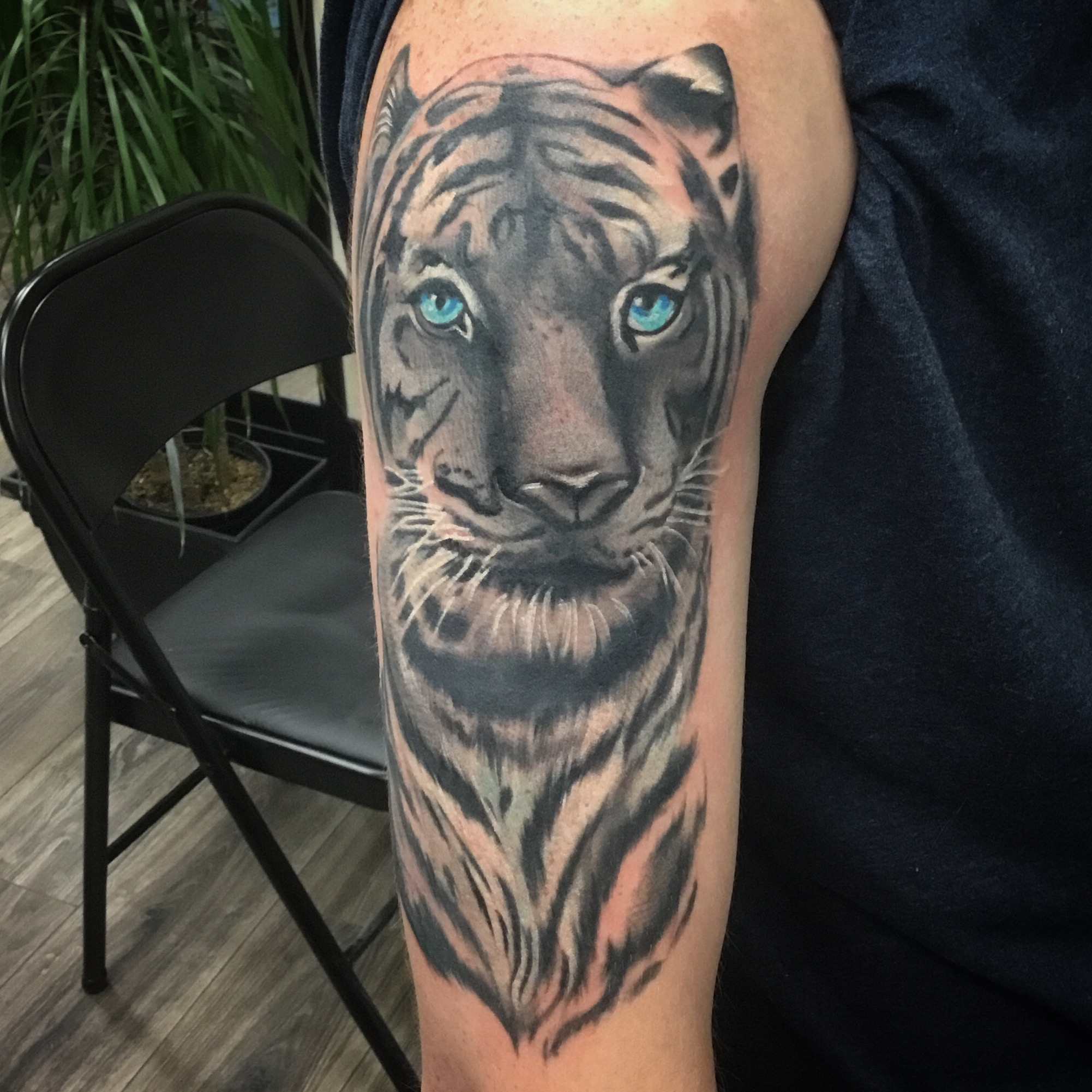 Tyler's tiger